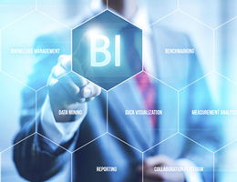 Business Intelligence & Analysis
